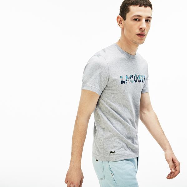 Lacoste Erkek Regular Fit Lacoste Baskılı Bisiklet Yaka Gri T-Shirt