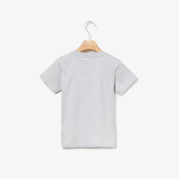 Lacoste Çocuk Desenli Gri T-Shirt